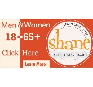 Banner Ad for Camp Shane